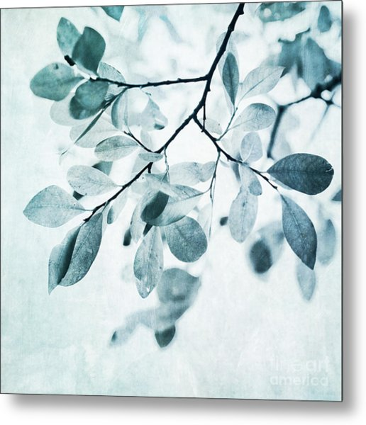 Leaves In Dusty Blue Metal Print