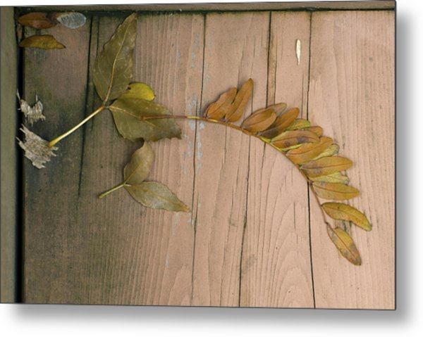 Leaves On A Wooden Step Metal Print