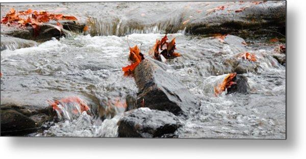 Leaves On Falling Water Metal Print
