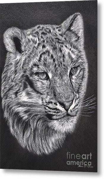 Adams Leopard - Pastel Metal Print