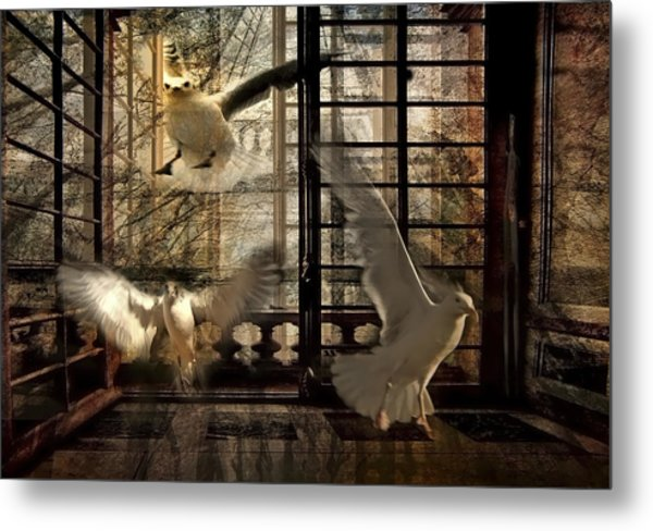 Let The Freedom In Metal Print