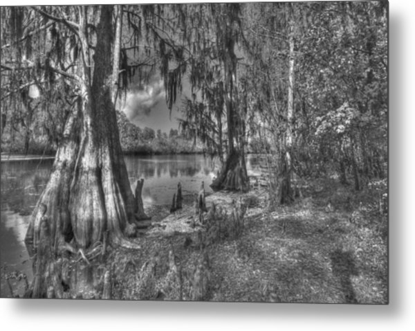 Lettuce Lake Metal Print