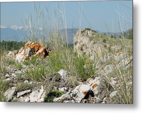 Lichen Covered Rocks At Missouri Headwaters State Park Montana Metal Print