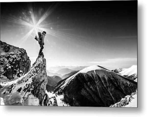 Life At The Top Metal Print