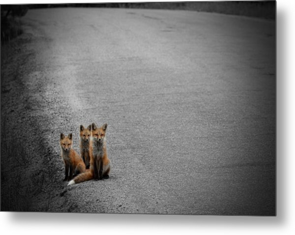Life Is An Unknown Highway Metal Print