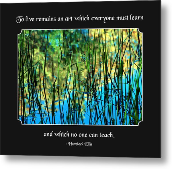 Life Remains An Art Metal Print by Mike Flynn