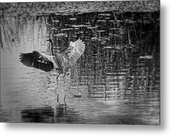 Liftoff Metal Print