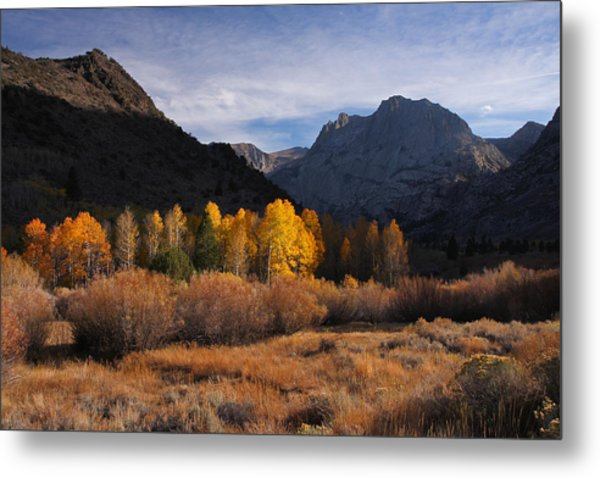 Light And Dark In An Autumnal Sierra Landscape Metal Print