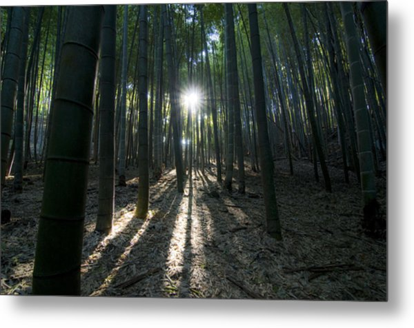 Light At The End Metal Print by Aaron Bedell