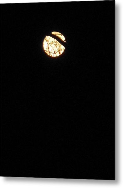 Light In A Dark Season Metal Print