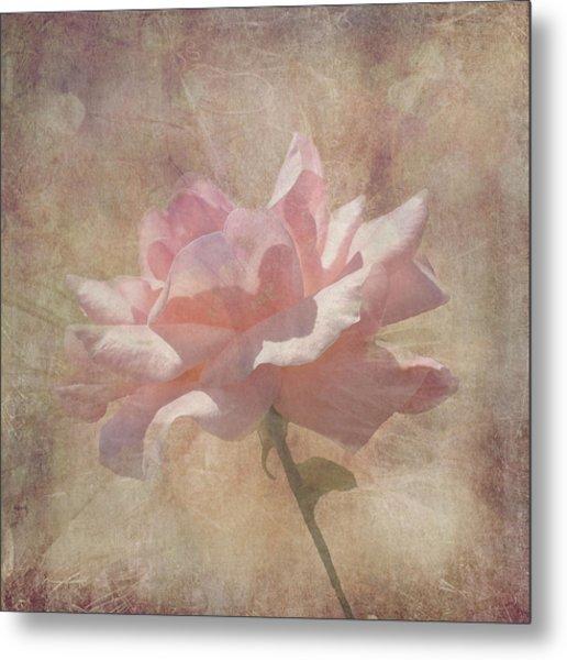 Light Pink Grunge Rose Metal Print