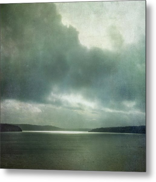 Metal Print featuring the photograph Light Within The Storm by Sally Banfill