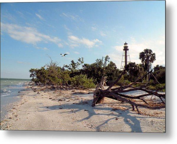 Lighthouse Beach Metal Print by Rosalie Scanlon