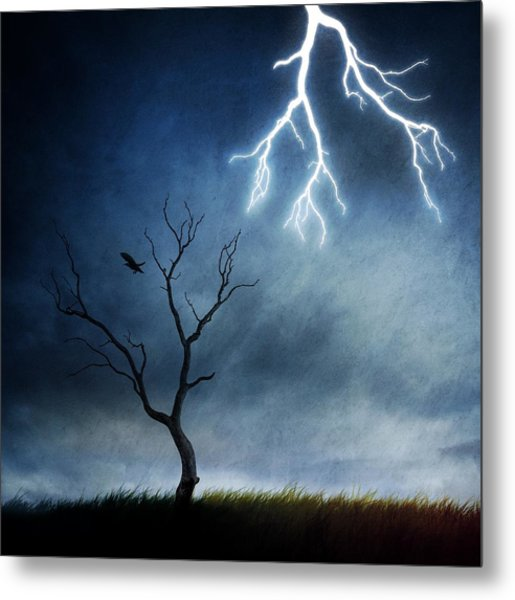 Lightning Tree Metal Print by Sebastien Del Grosso