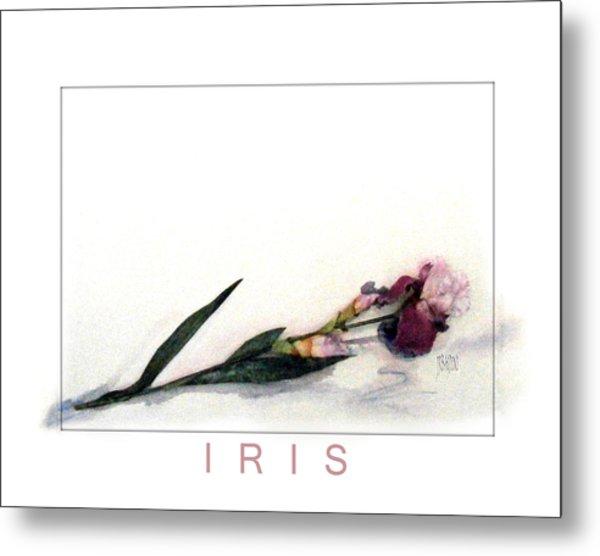 Like A Watercolor Iris Metal Print