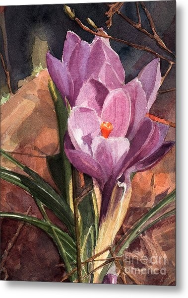 Lilac Crocuses Metal Print