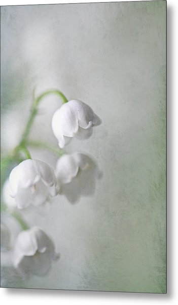 Lilies Of The Valley Metal Print