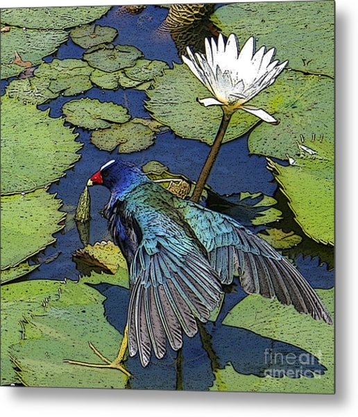Lily Pad With Bird Metal Print