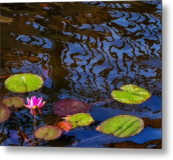 Lily Pond Abstract A Study In Patterns Metal Print