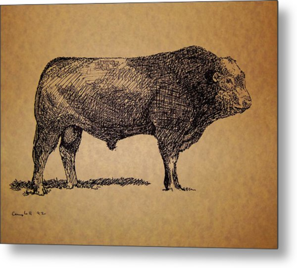 French Limousine Bull Metal Print