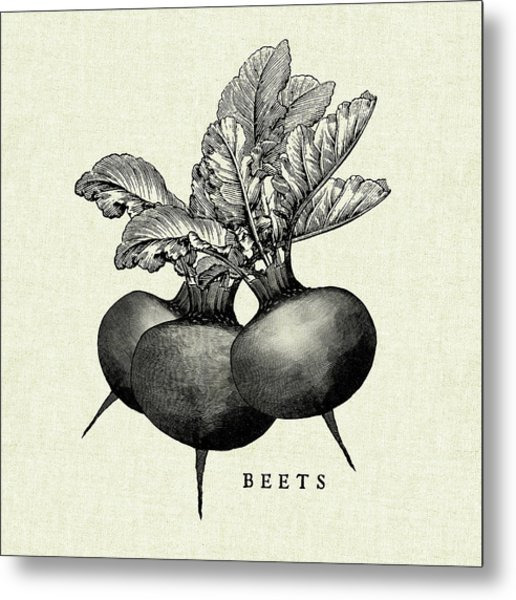 Linen Vegetable Bw Sketch Beets Metal Print by Studio Mousseau