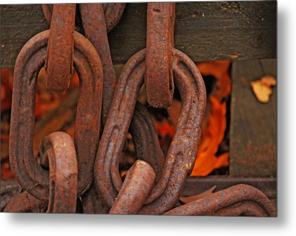 Linked Metal Print