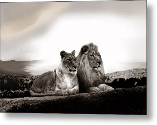 Lion Couple In Sunset Metal Print