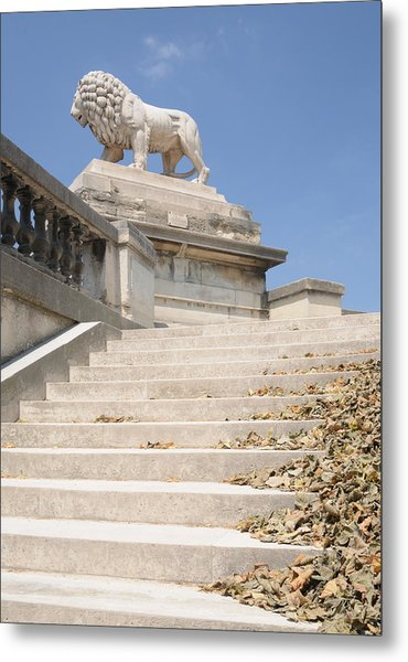 Lion Tuileries Garden Paris Metal Print