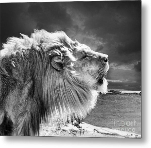 Lions Breath Metal Print