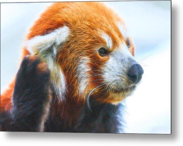 Listening Red Panda Metal Print