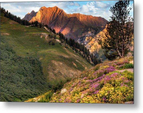 Little Cottonwood Canyon Near Alta Utah Metal Print