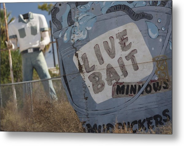 Live Bait And The Man Metal Print