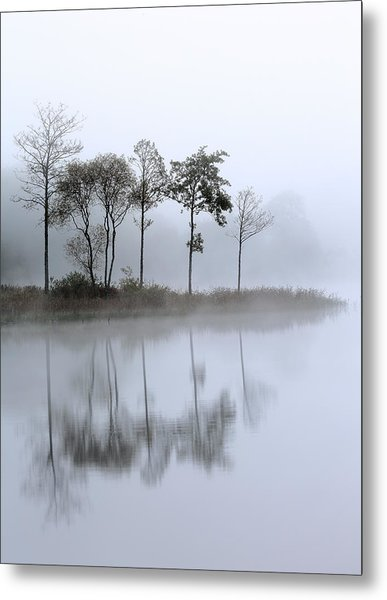Loch Ard Trees In The Mist Metal Print
