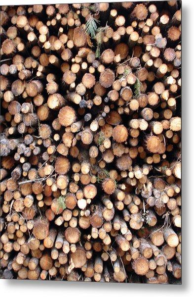 Logs Metal Print by Michel Mata