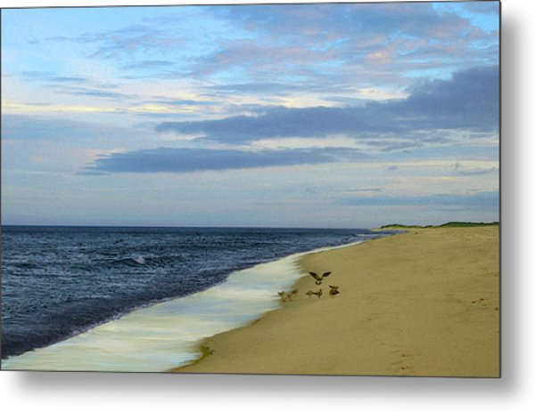 Lonely Cape Cod Beach Metal Print