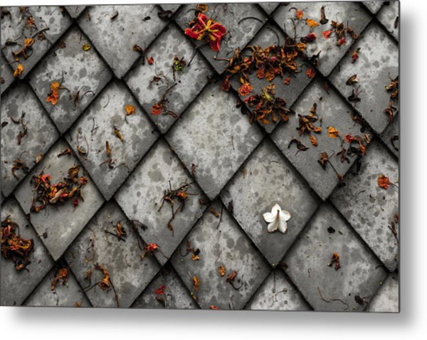 Lonely Flower Metal Print