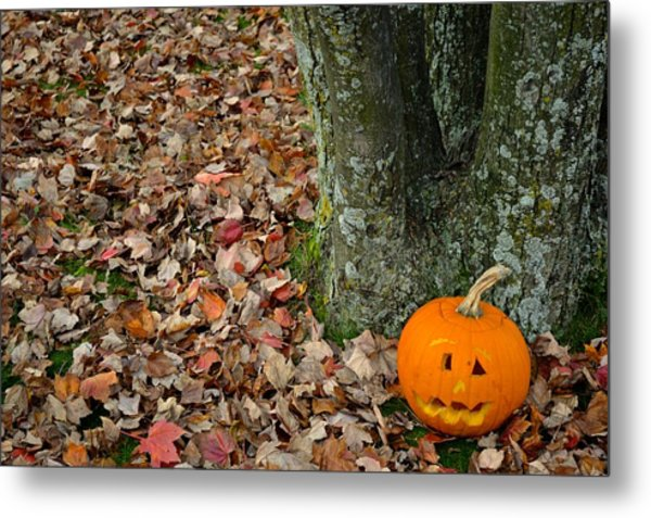 Lonely Pumpkin Metal Print