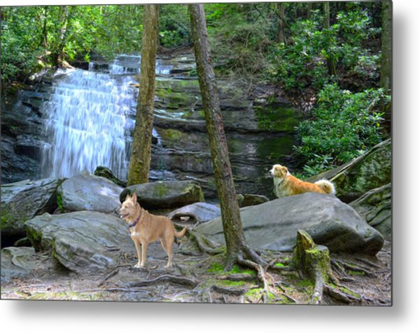 Long Creek Falls Metal Print by Bob Jackson