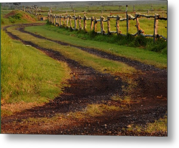 Long Dirt Road Metal Print