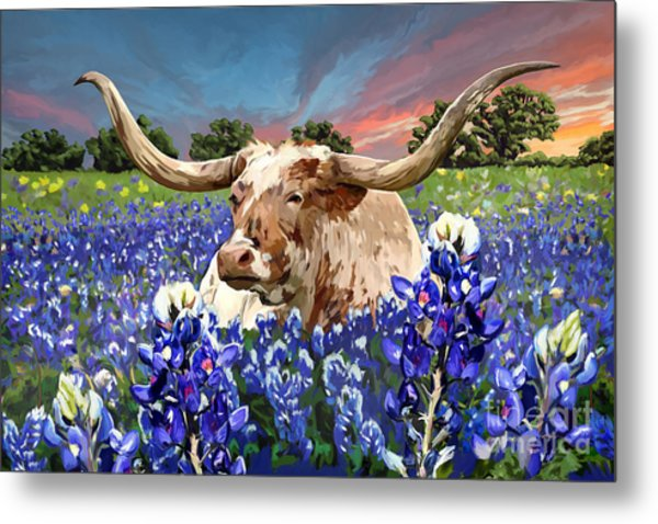 Longhorn In Bluebonnets Metal Print