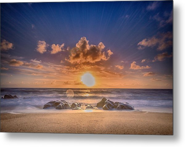 Looking At The Sun Metal Print