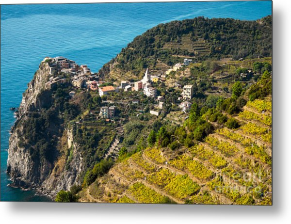 Looking Down Onto Corniglia Metal Print