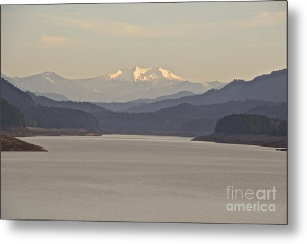 Looking For Diamond  Metal Print by Tim Rice
