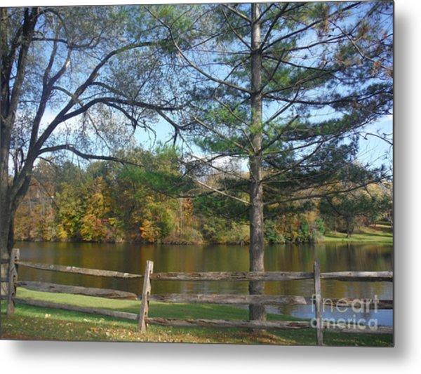 Looking Over The Pond Metal Print by Linda Walker
