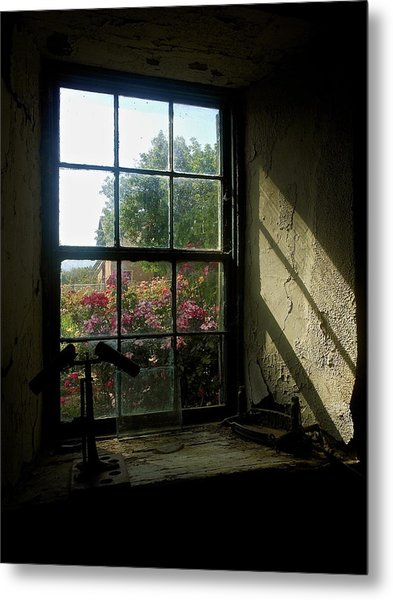 Looking Through Time Metal Print