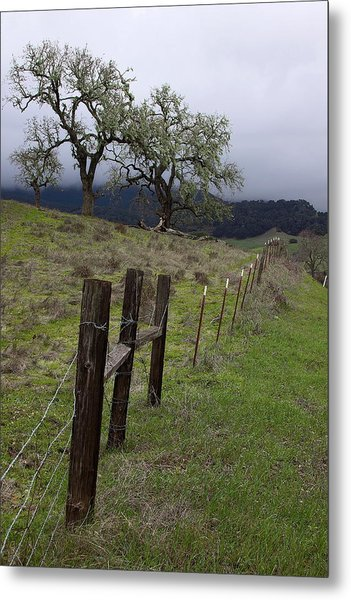 Los Padres National Forest Metal Print