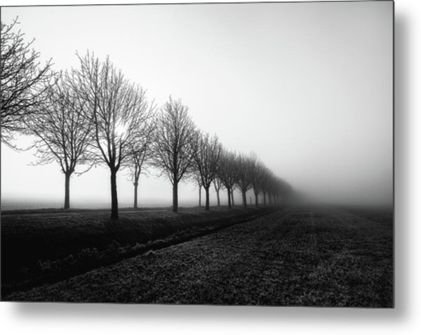 Losing Sight Metal Print by Christophe Staelens