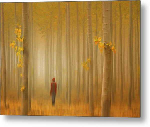 Lost In Autumn Metal Print by Lydia Jacobs