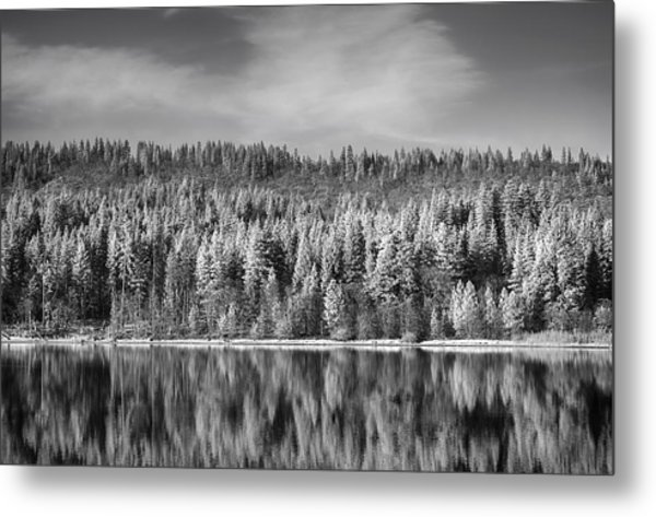 Lost In Reflection Metal Print