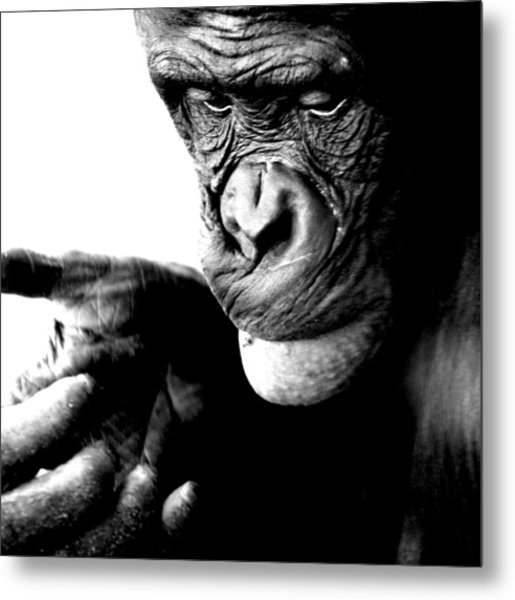 Lost In The Moment Metal Print
